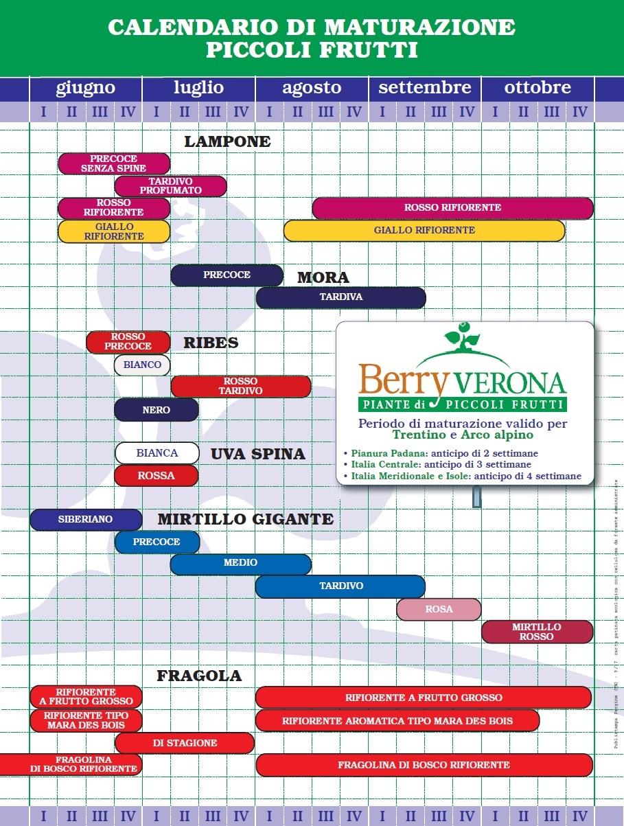 Piante per garden center - Calendario trattamenti piante da frutto ...